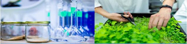 Nueva jornada RIS3 sobre Biotecnología de los alimentos y tendencias de consumo tras COVID
